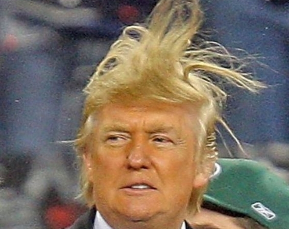 donald-trump-hair-7